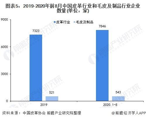 图表5:2019-2020年前8月中国皮革行业和毛皮及制品行业企业数量(单位:家)