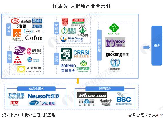 图表3:大健康产业全景图