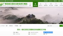 广西灵川:桔红甘棠江田园综合体成网红打卡地