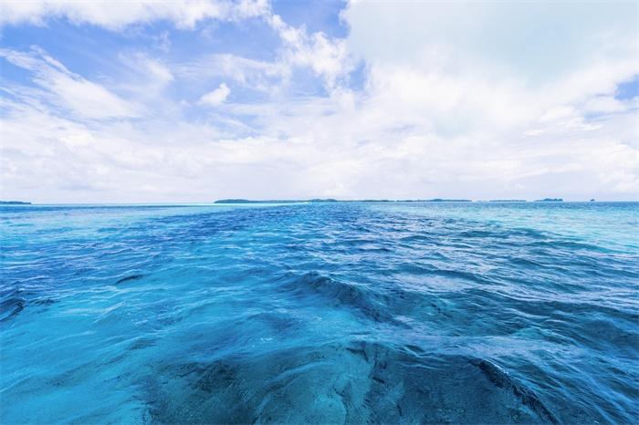 """不断扩张!墨西哥湾底部发现大面积""""生物沙漠"""",覆盖约6334平方英里"""