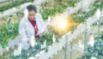 平潭综合实验区:关于再次征集2021年省级现代农业智慧园储备项目的函