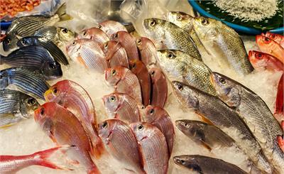 韓國民眾拉黑日本海鮮