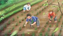 肥城市:现代农业先行区建设推进情况座谈会召开