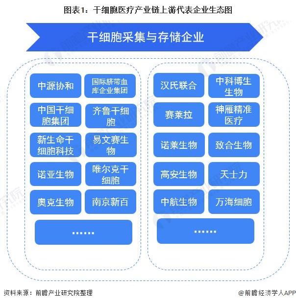 图表1:干细胞医疗产业链上游代表企业生态图