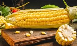 十张图了解2020年中国玉米行业供需现状及市场价格 市场供需紧平衡且价格上涨