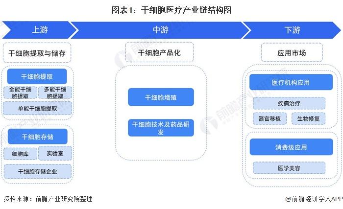 图表1:干细胞医疗产业链结构图