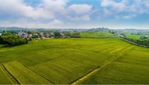 中国农业农村部关于开展现代农业全产业链标准化试点工作的通知
