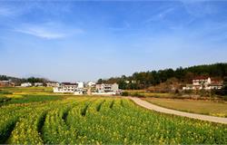 安徽省蚌埠市怀远县经济开发区多途径推进秸秆综合利用现代环保产业示范园区建设