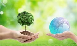 2020年中国环保产业细分领域企业市场份额分析
