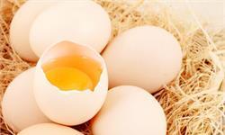 鸡蛋吃几个合适?每周超过6个要注意了,死亡风险大幅升高!