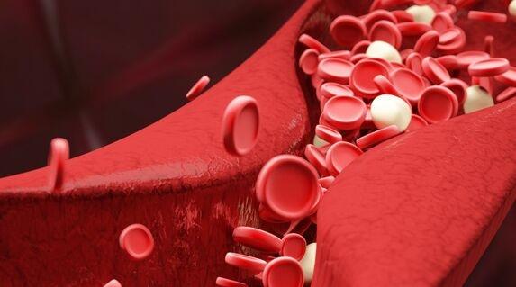 "HIV疫苗新突破!杜克大学发现一种新抗体可攻破HIV""盾墙"" 还能对抗新冠病毒"