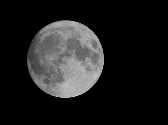 SpaecX好忙!航天公司萤火虫选择SpaceX进行首次月球着陆任务