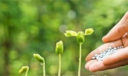 2021年全球肥料市场供需现状及发展趋势分析 疫情影响下市场需求增速将有所放缓
