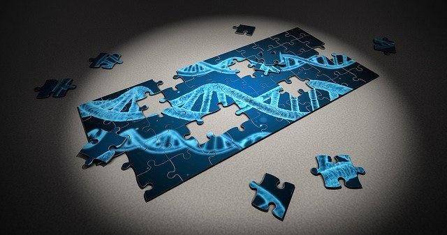 20000个人类基因的CRISPR筛选 揭示了特殊的神经元氧化应激结果