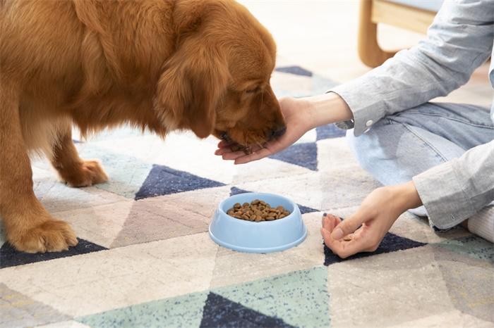 警惕!生狗粮或助长耐抗生素超级细菌的传播,滋生数量和多样性超乎想象