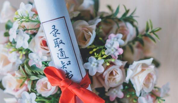 衡水中学高三学生张锡峰:我就是一只来自乡下的土猪,立志去拱大城市里的白菜!