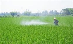 2021年全球<em>农药</em>行业市场规模现状及企业市场份额分析 亚太地区成为主要消费市场