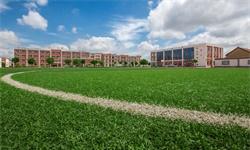 2021年全球<em>人造草坪</em>行业市场供需现状及区域市场格局分析 中国出口规模超60%