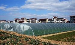 2021年中国农用薄膜行业市场现状及发展前景分析 未来5年产量规模或将突破百万吨