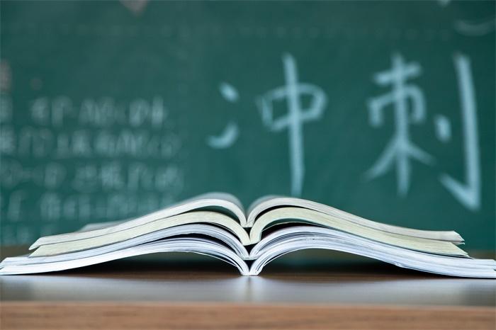 """梁建章:""""鸡娃""""现象严重,应取消或弱化高考,普及大学教育"""