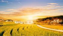 武汉市市级都市田园综合体创建申报指南