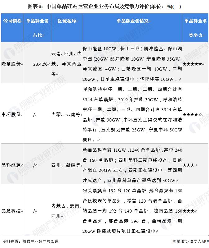 图表6:中国单晶硅站运营企业业务布局及竞争力评价(单位:%)(一)
