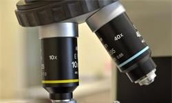 2021年中国光学显微镜行业市场规模、区域格局及发展前景 未来市场规模进一步扩大