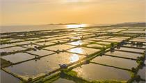 苏州市全力推进现代农业园区转型升级
