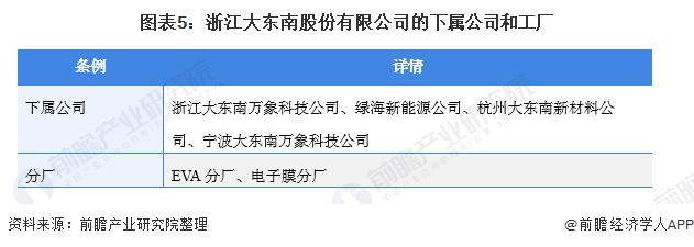 图表5:浙江大东南股份有限公司的下属公司和工厂