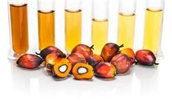 2021年全球生物柴油市场供需现状及区域格局分析 全球生物柴油产量将近480亿升