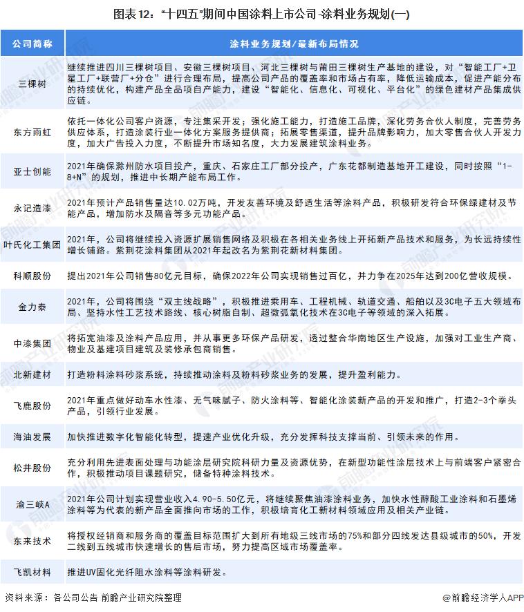 """图表12:""""十四五""""期间中国涂料上市公司-涂料业务规划(一)"""