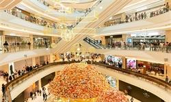 2021年中国购物中心行业市场现状及发展趋势分析 三线及以下城市发展空间较大