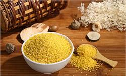 多吃小米,有助于降血糖!大規模研究:小米對預防及控制糖尿病效果俱佳