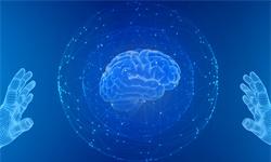 《自然》:新分子圖譜揭示腦細胞遵循的遺傳和發育軌跡