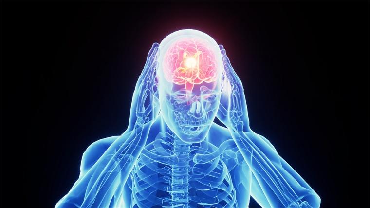 """大脑分子可""""唤醒""""脑细胞,有助于治疗多发性硬化症"""