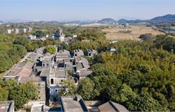 江门新会:奋力建设一流园区 打造高质量发展集聚高地