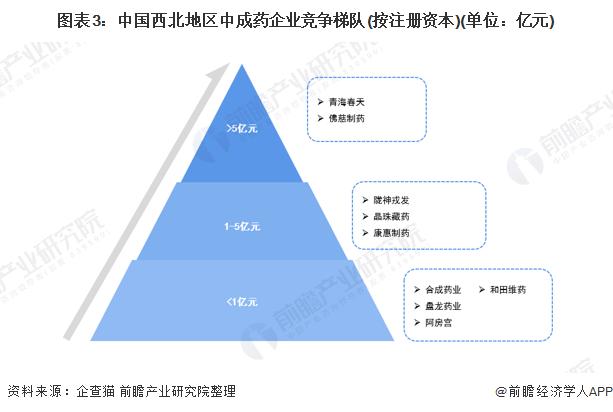 圖表3:中國西北地區中成藥企業競爭梯隊(按注冊資本)(單位:億元)