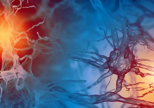 疼痛感会降低多巴胺活性!科学家研究疼痛与多巴胺神经元之间的神经回路
