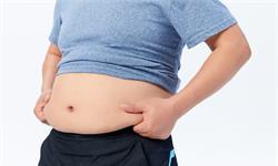 肥胖症研究新发现!一种细胞因子可成为潜在的治疗方法