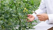 丽水市庆元县:关于公开征集2021年度省级现代农业园区创建申报的公告