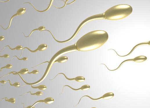 日本科学家利用多能干细胞制造精子,让小鼠成功产下后代