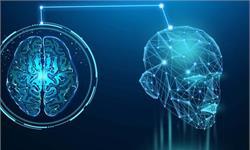考試必備!研究發現:大腦在清醒休息時,以20倍的速度回放新記憶