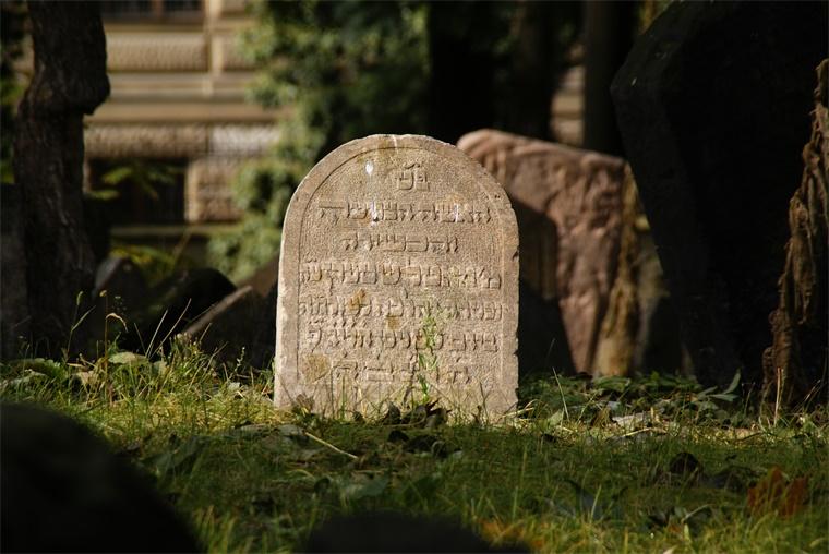 谁与内斯特的杯子一起埋葬?内斯特杯墓中到底埋葬了多少人?