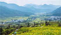 江西省:现代农业产业园建设支持政策