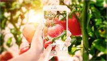 关于开展2021年广西特色农业现代化示范区验收监测认定工作的通知