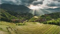 2021-2022年庆元县绿色农业产业高质量发展扶持政策若干意见