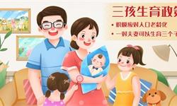 """2021年中国""""三孩政策""""概念上市公司市场竞争格局分析 三大方面进行全方位对比"""