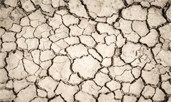 """留給我們的時間不多了!科學家警告:多個""""氣候臨界點""""已逼近"""