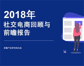 2018年社交电商回顾与前瞻报告
