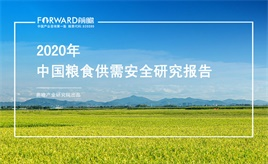 2020年中國糧食供需安全研究報告